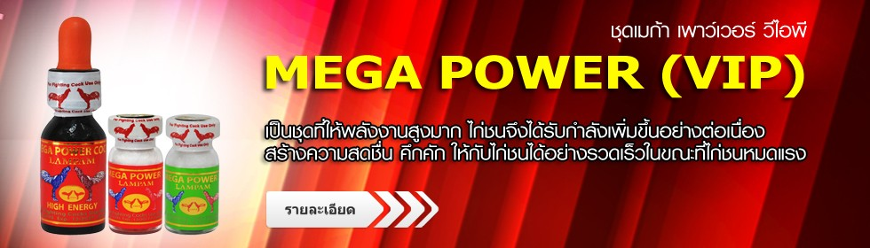 MEGA POWER VIP